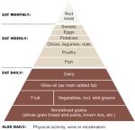 Med Diet Pyramid 2